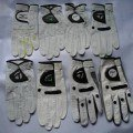 Sarung Tangan ( Golf Glove ) Full Kulit